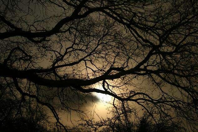 darkness-1232724_1280.jpg