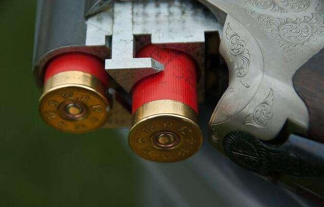 gun-1761235_1280.jpg