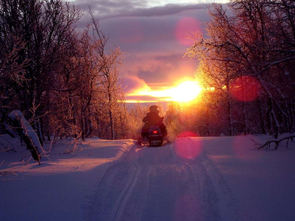 person on a snowmobile riding into the sunset
