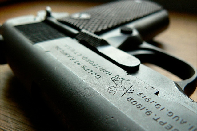 Seized Gun